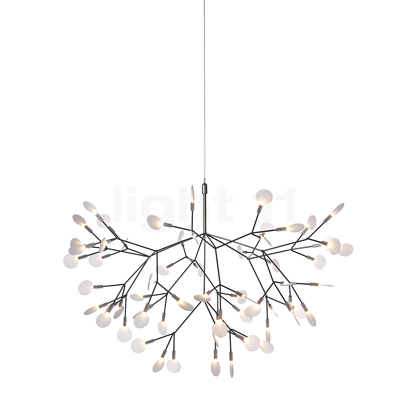 moooi heracleum ii pendant light pendant lights lamps. Black Bedroom Furniture Sets. Home Design Ideas