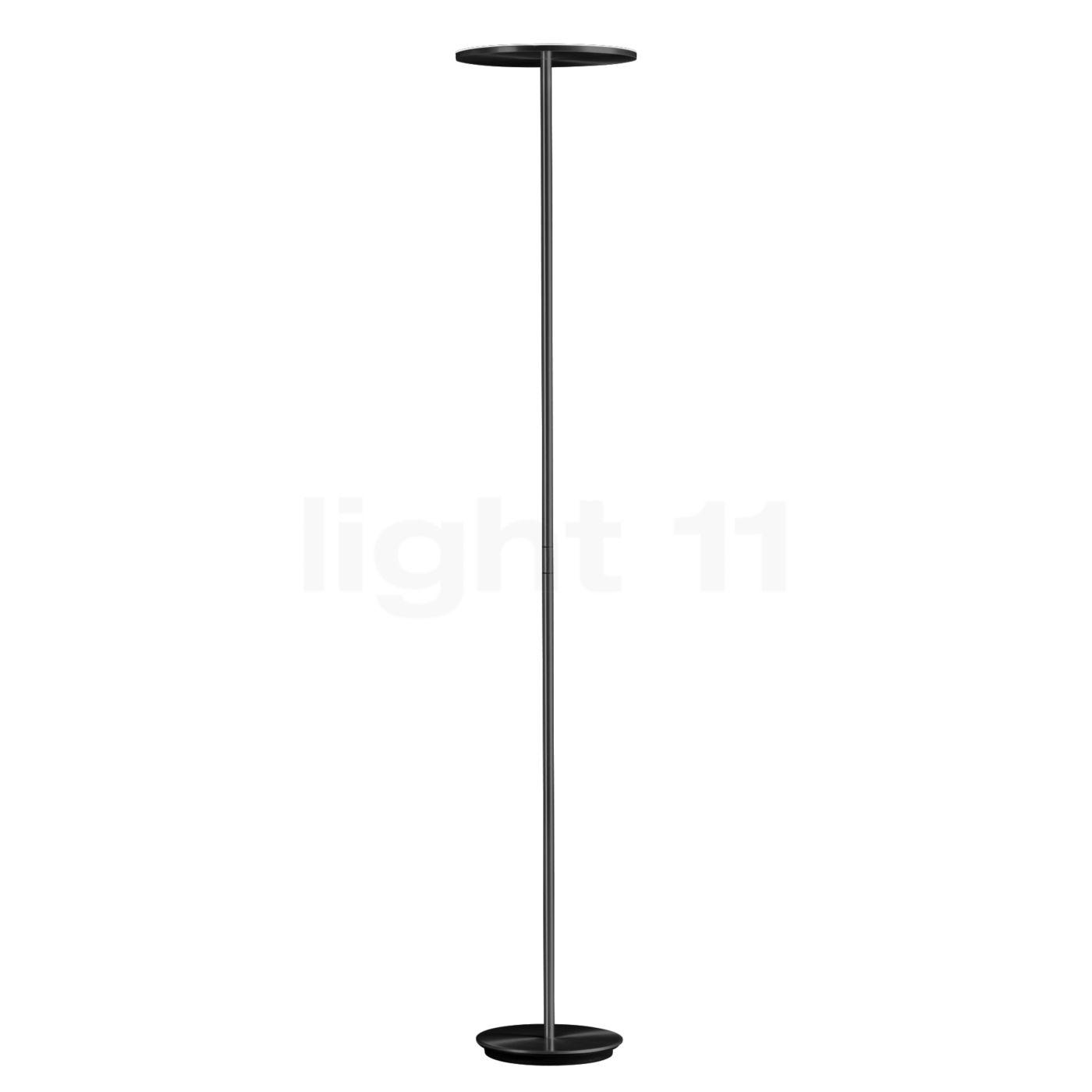 Holtkötter Plano Deckenfluter LED, Platin 9901-4-62