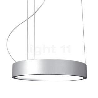 Absolut Lighting Aluring Pendel LED krom skinnende