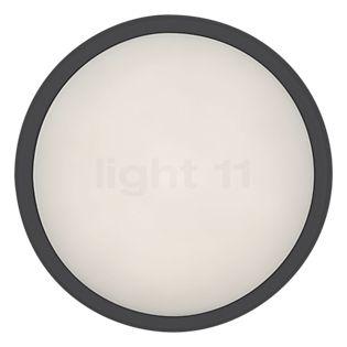 Ares Anna 410 Decken-/Wandleuchte LED anthrazit, 3.000 K