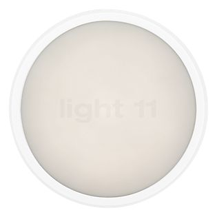 Ares Anna 410 Wall-/Ceiling Light LED white, 3,000 K