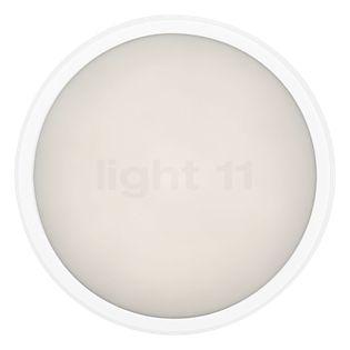 Ares Anna 410 plafond-/wandlamp LED wit, 3.000 K