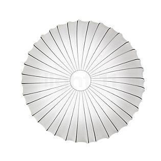 Axolight Muse, lámpara de techo y pared, ø80 cm blanco