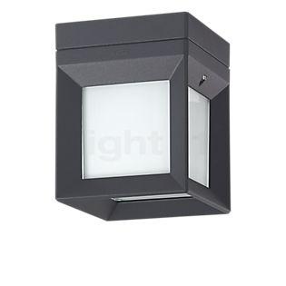 Bega 22453 - Plafond-/Wandlamp LED grafiet - 22453K3