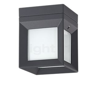 Bega 22453 - wall-/ceiling light LED graphite - 22453K3