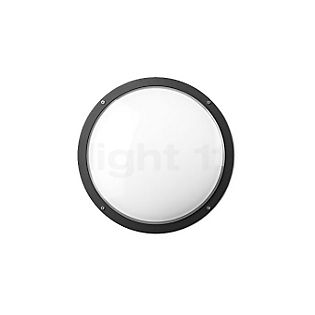 Bega 22507 - wall-/ceiling light graphite - 22507
