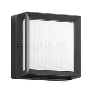 Bega 22645 - Lampada da parete e soffitto grafite - 22645