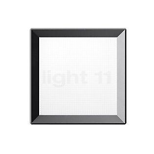 Bega 22652 - Wall/Ceiling Light LED graphite - 22652K3