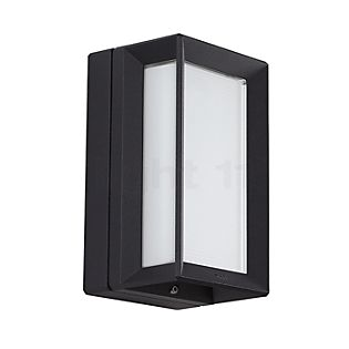 Bega 22733 - Wall- and ceiling light graphite - 22733