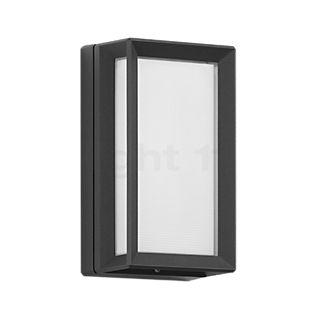 Bega 22751 - Decken-/Wandleuchte LED graphit - 22751K3
