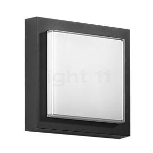 Bega 33234 - Decken-/Wandleuchte LED graphit - 33234K3