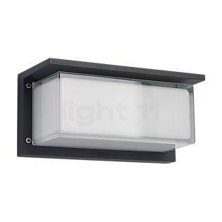 Bega 33485 - Wandlamp grafiet - 33485
