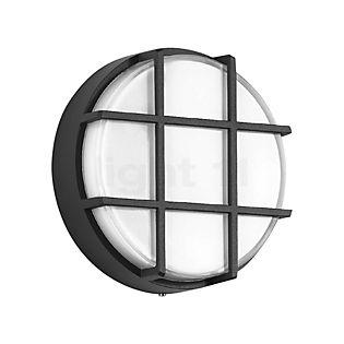 Bega 33504 - Lampe murale/Plafonnier LED graphite - 33504K3
