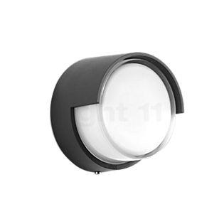 Bega 33507 - wall-/ceiling light LED graphite - 33507K3