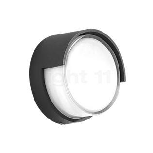 Bega 33508 - wall-/ceiling light LED graphite - 33508K3