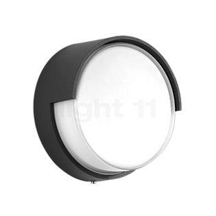 Bega 33509 - wall-/ceiling light LED graphite - 33509K3