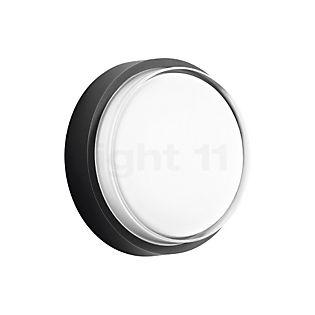 Bega 33535 - wall-/ceiling light LED graphite - 33535K3