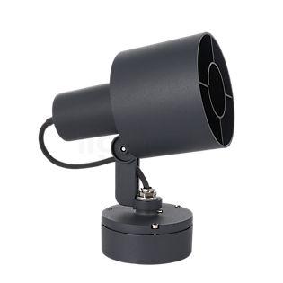 Bega 77423 - Scheinwerfer mit Montagedose graphit - 77423