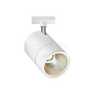 Bruck Act Flood Strahler LED für Duolare Schiene Chrom matt