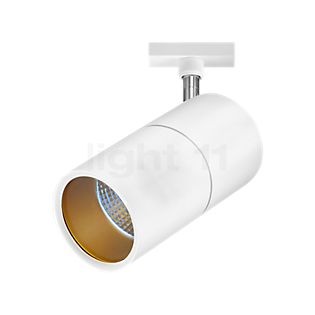 Bruck Act Medium Plus Projecteur LED pour Duolare Rail blanc