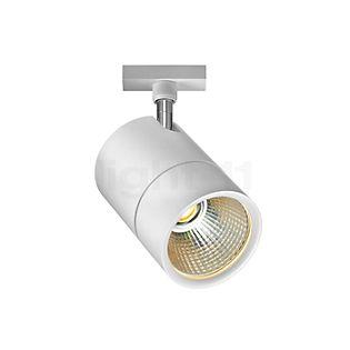 Bruck Act Medium Projecteur LED pour Duolare Rail chrome mat - 860435mcgy