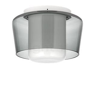 HELESTRA Canio Plafondlamp grijs