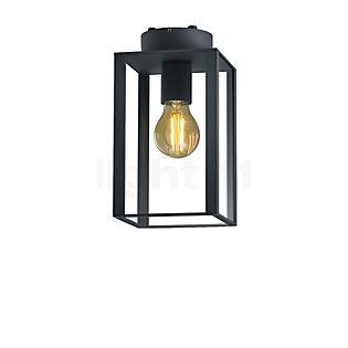HELESTRA Skip, lámpara de techo grafito