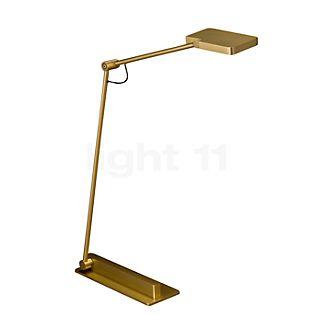 Holtkötter Clea T Lampe de table LED laiton anodisé