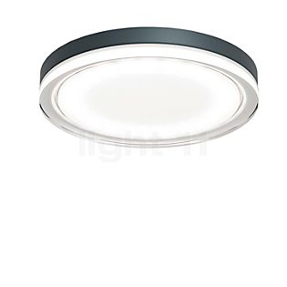 IP44.de Lisc Wall/Ceiling Light LED anthracite