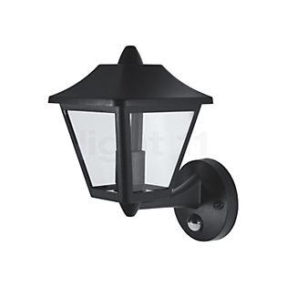 Ledvance Endura Classic lanterne murale avec détecteur de mouvements noir, up