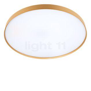Luceplan Compendium Plate Parete/Soffitto LED messing