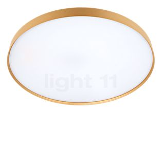 Luceplan Compendium Plate Parete/Soffitto LED ottone