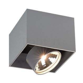 Mawa Wittenberg Ceiling Light flush metallic