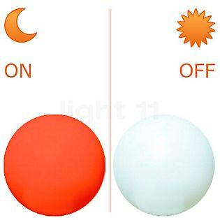 Moonlight Farbfilter passend für Moonlight ø75cm, 23W dunkelorange , Auslaufartikel