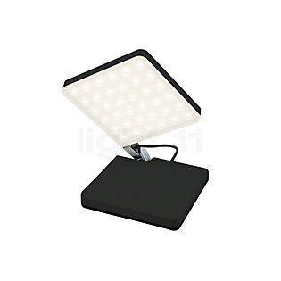 Nimbus Roxxane Fly LED nero