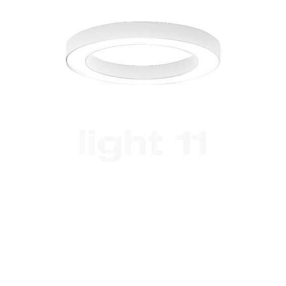 Panzeri Silver Ring Deckenleuchte LED