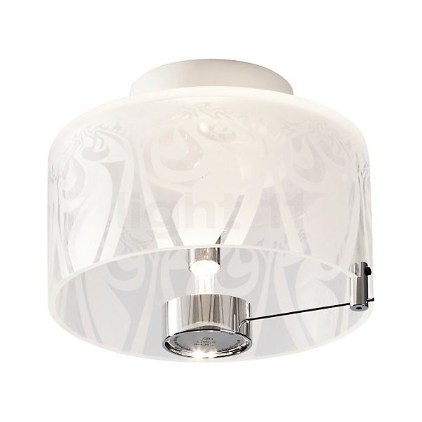 Absolut Lighting Shining wall/ceiling light