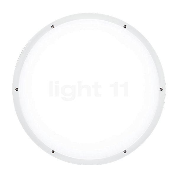Ares Giulia 400 plafond-/wandlamp LED
