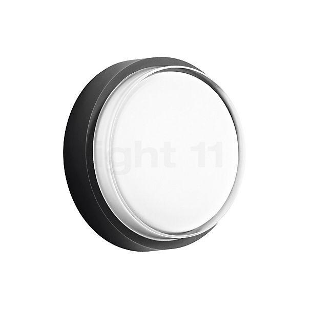 Bega 33535 - Decken- und Wandleuchten LED