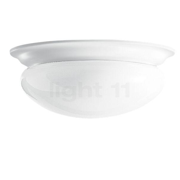 Bega Indoor 50346 Decken-/Wandleuchte LED