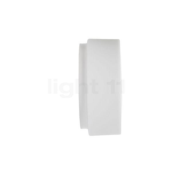 Bega Indoor 89010 Plafond-/Wandlamp in 3D aanzicht voor meer details
