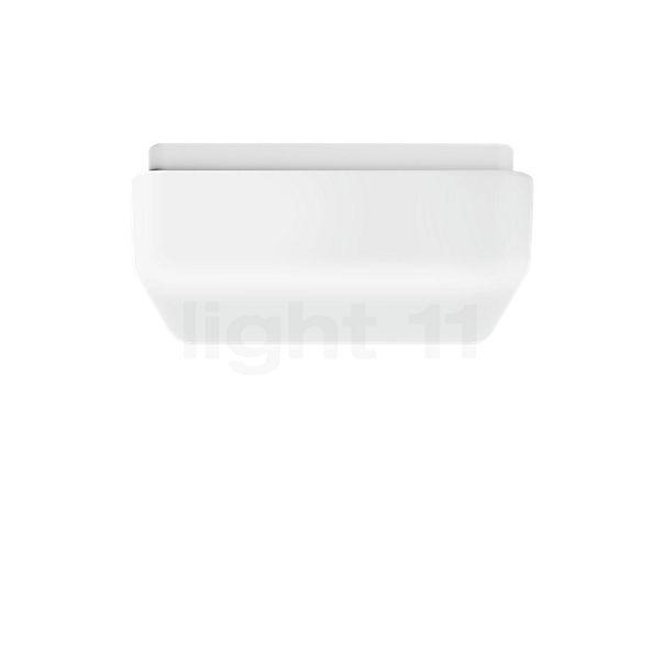 Bega Indoor Prima 50300 Plafond-/Wandlamp LED