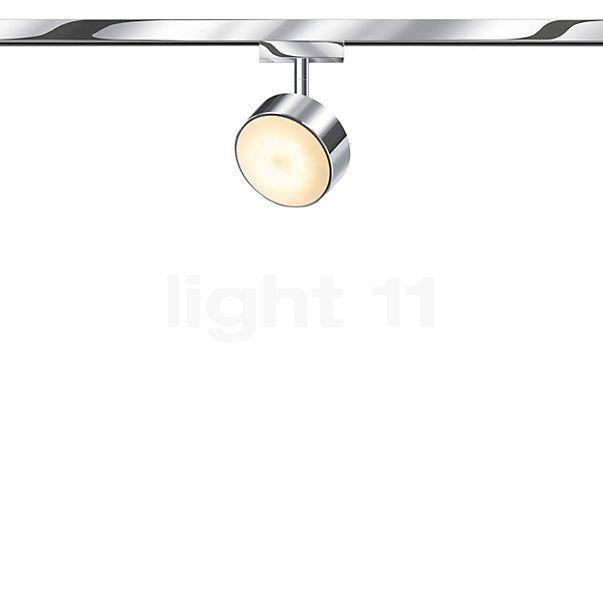Bruck Tuto Spot LED für Duolare Schiene
