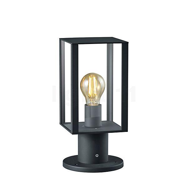 HELESTRA Skip Pullertlampe, short