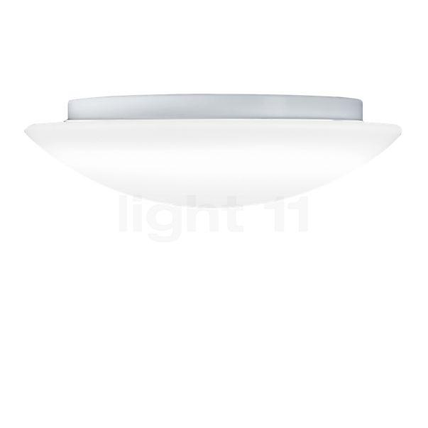 Kollektion ARI Cuna lofts-/væglampe LED