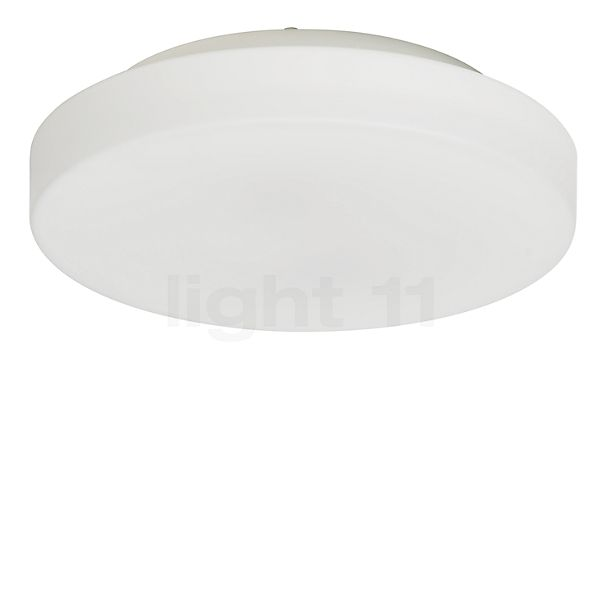 Kollektion ARI Rasa lofts-/væglampe LED