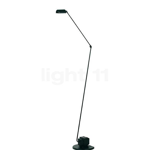 Lumina Daphine Terra LED