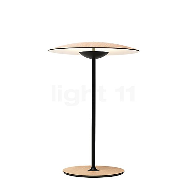 Marset Ginger 20 M Table lamp with battery LED