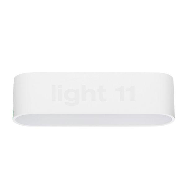 Mawa Oval Office 4 Wandlamp LED in 3D aanzicht voor meer details
