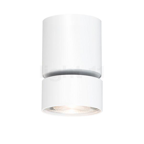 Mawa Wittenberg 4.0 Fernrohr Plafondlamp LED